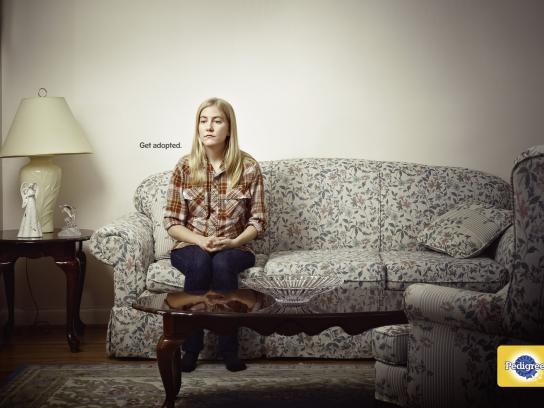 Pedigree Print Advert By Bbdo Wilson Ads Of The World