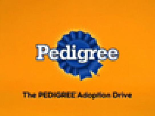 Pedigree Film Ad -  Crazy