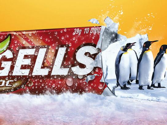 Freegells Print Ad -  Penguins