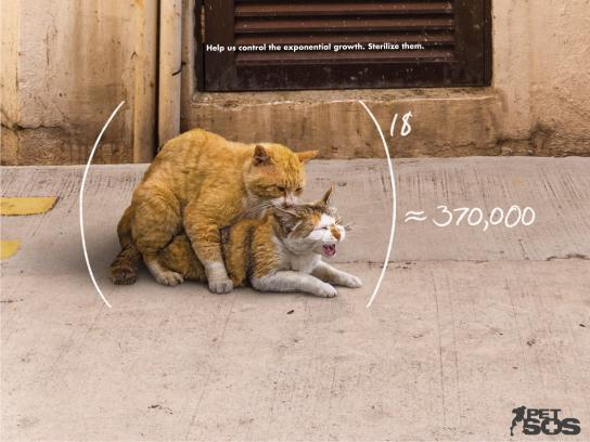 Pet SOS Print Ad - Exponential Growth - Cats
