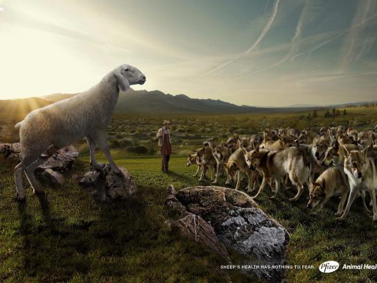 Pfizer Print Ad -  Wolf