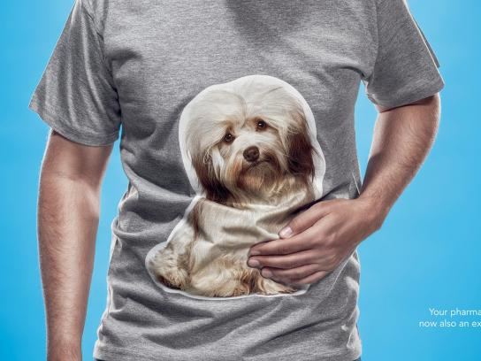 Pet Health Association Print Ad -  Dog