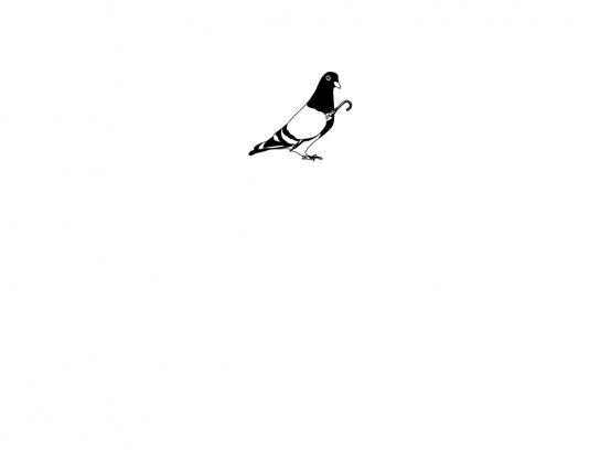 M&C Saatchi Print Ad -  Pigeon