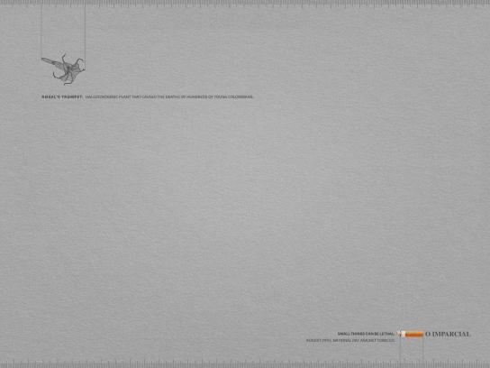 O Imparcial Print Ad -  Angel's Trumpet