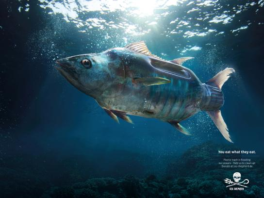 Sea Shepherd Print Ad - Tuna