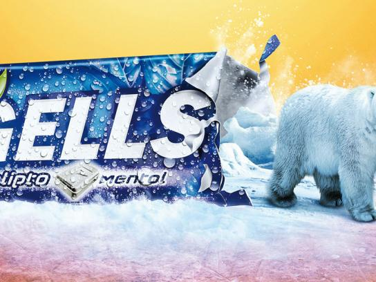 Freegells Print Ad -  Polar Bear
