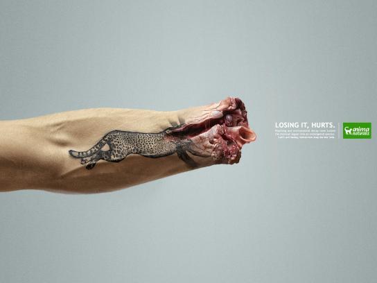 AnimaNaturalis Print Ad - Jaguar