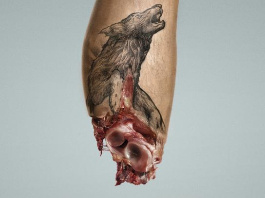 AnimaNaturalis Print Ad - Wolf