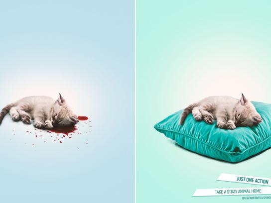 Novy Shans Print Ad - Shelter for homeless animals, 3