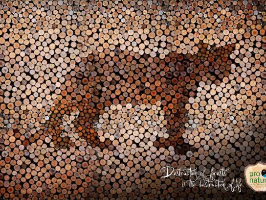 Pro-Natura Print Ad -  Jaguar