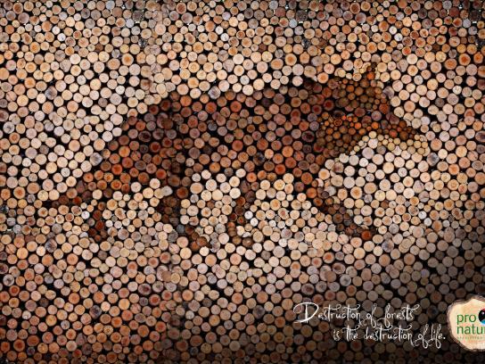 Pro-Natura Print Ad -  Wolf