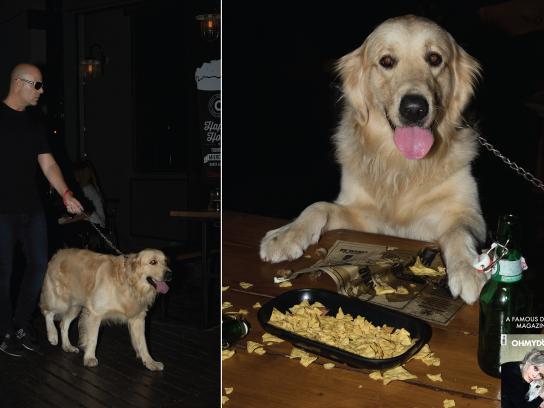 Oh my Dog Print Ad - Pub