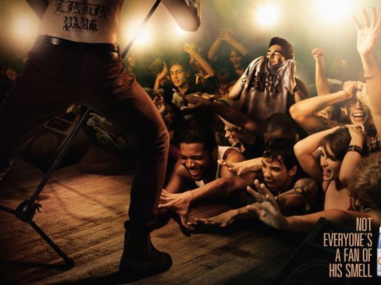 Q-all Print Ad -  Concert