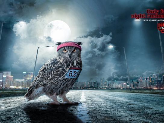 Radio City 89.3 FM Print Ad - Owl