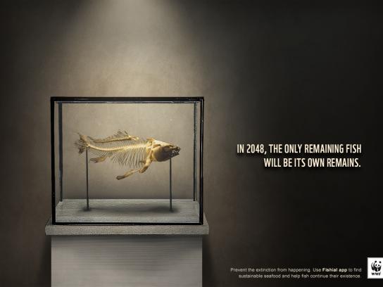 WWF Print Ad - Remains