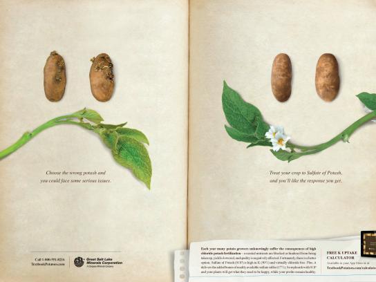 Great Salt Lake Minerals Corporation Print Ad -  Potatoes