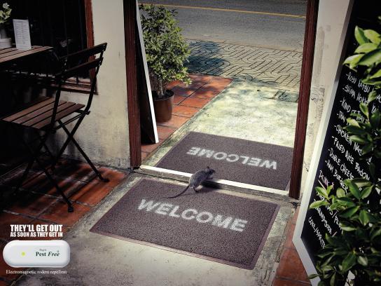 Pest Free Print Ad -  Restaurant