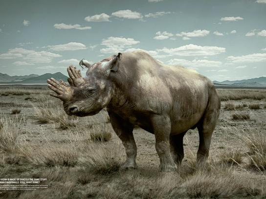 WWF Print Ad -  Rhino Horn, Fingernails