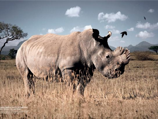 WWF Print Ad -  Rhino Horn, Toenails