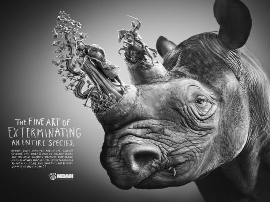 Noah Print Ad -  Rhino