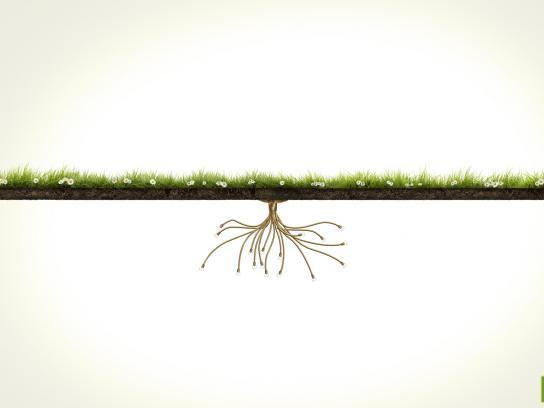 Roof Garden Print Ad -  Grass, 2