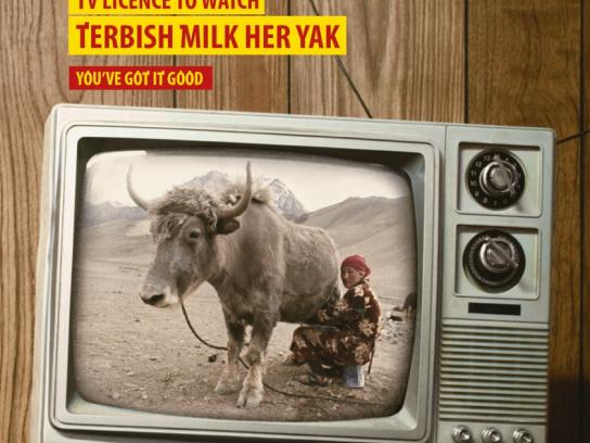 South African Broadcasting Corporation Print Ad -  Yak