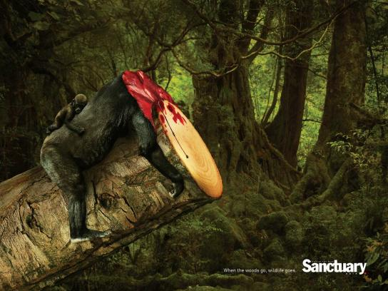 Sanctuary India Print Ad -  Wildlife, 3
