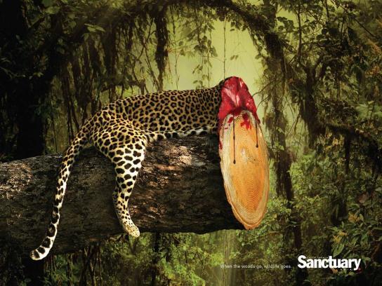 Sanctuary India Print Ad -  Wildlife, 1