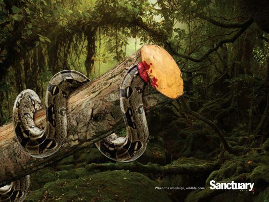Sanctuary India Print Ad -  Wildlife, 2