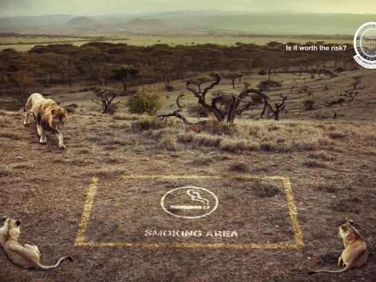 Santa Casa Print Ad -  Lions