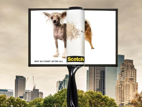 Scotch Outdoor Ad - Furry Situation, 2