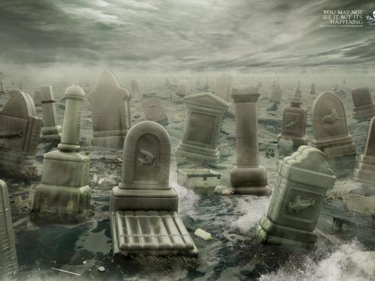 Sea Shepherd Print Ad -  Graveyard