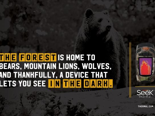 Seek Thermal Print Ad -  Bear