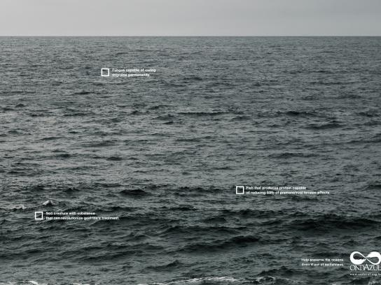 Onda Azul Print Ad -  Selfishness, 3