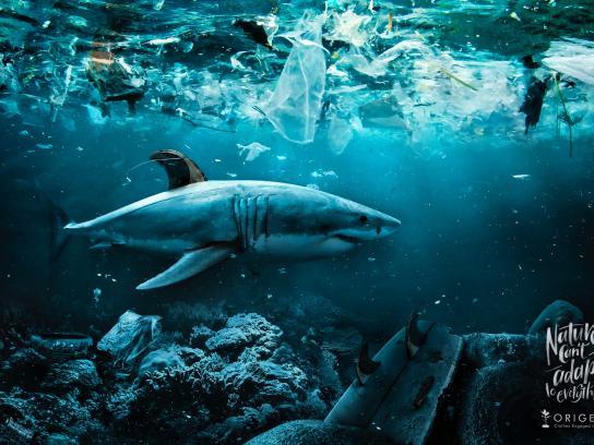 Origens Print Ad - Shark