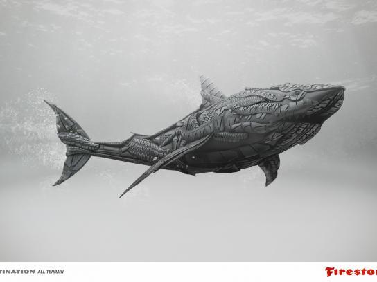 Firestone Print Ad -  Shark