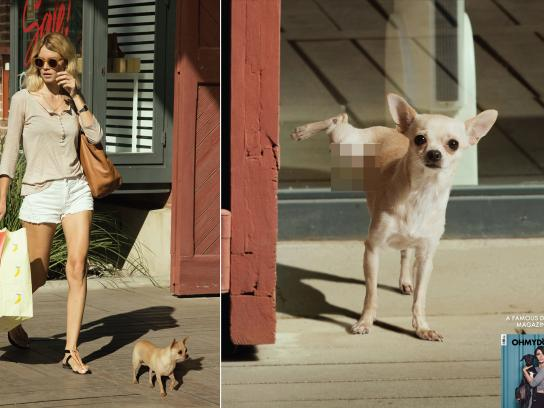 Oh my Dog Print Ad - Shopp