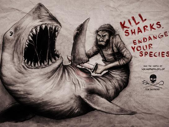 Sea Shepherd Print Ad - Shark