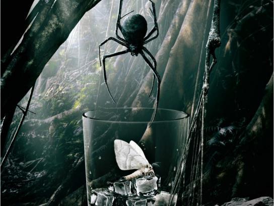 Diageo Print Ad -  Spider