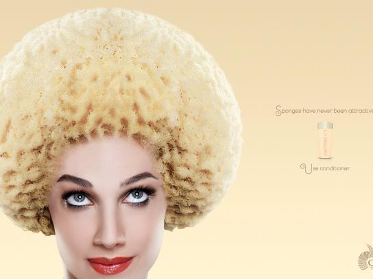 Canipec Print Ad -  Sponge