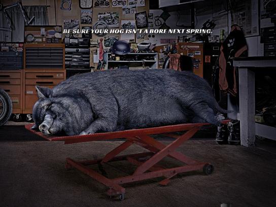 Sta-Bil Storage Print Ad -  Hog