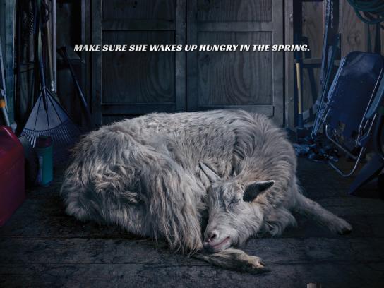 Sta-Bil Storage Print Ad -  Goat