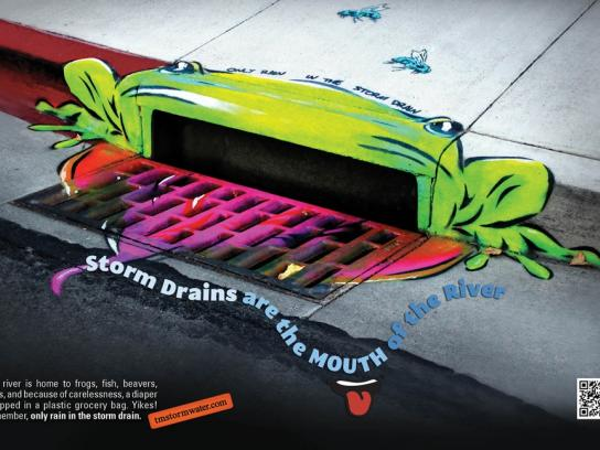 City of Reno Print Ad -  Frog