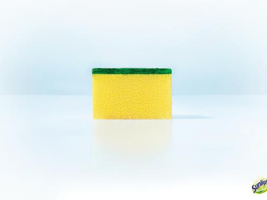 Sunlight Print Ad -  Sponge