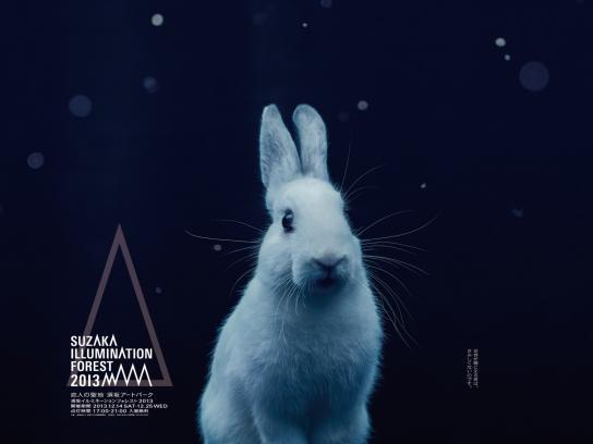 Suzaka Illumination Forest Outdoor Ad -  Rabbit