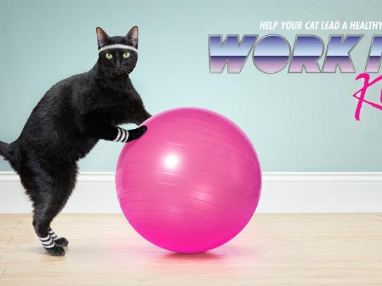 Temptations Print Ad -  Work it Kitty!, Swiss ball