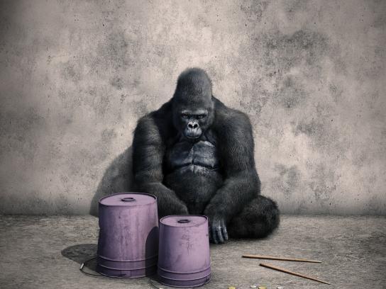TABS Print Ad -  Gorilla
