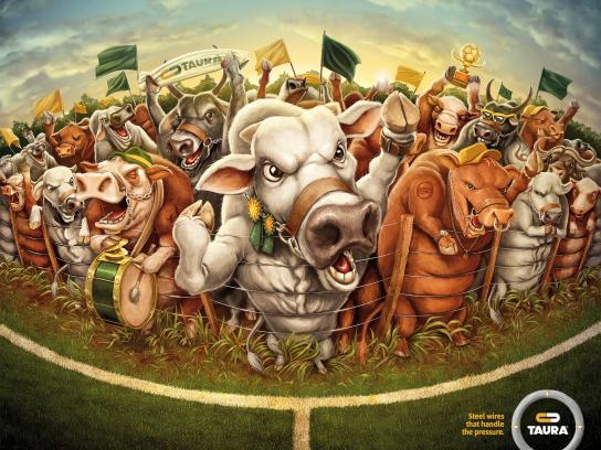 Taura Print Ad -  Bulls
