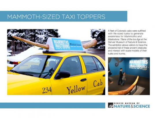 Denver Museum of Nature & Science Ambient Ad -  Taxi