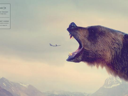 Trust Cargo International Print Ad - Bear